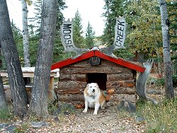 The log cabin doghouse at Moose Creek Lodge